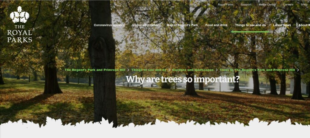 https://www.royalparks.org.uk/parks/the-regents-park/things-to-see-and-do/gardens-and-landscapes/tree-map/why-trees-are-important#:~:text=Trees%20are%20vital.,materials%20for%20tools%20and%20shelter.